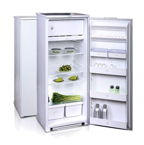 холодильник Бирюсу?