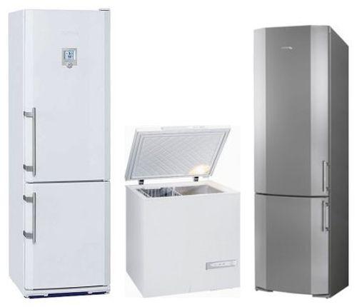 Виды холодильников Либхер