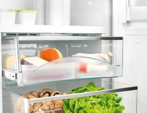 Морозилка холодильника ноу фрост