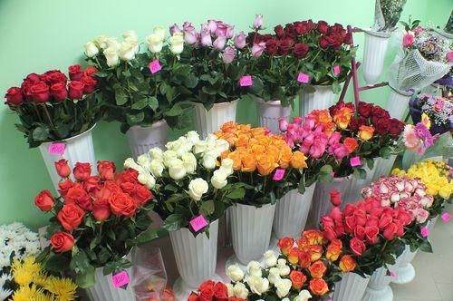 Сколько могут розы без воды