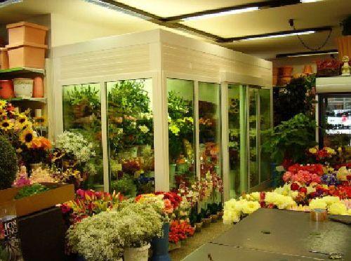 Цветы в холодильнике