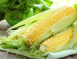 kukuruza-mikrovolnovke_7